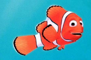 I guess I AM a Free-Range Kid...er...fish.